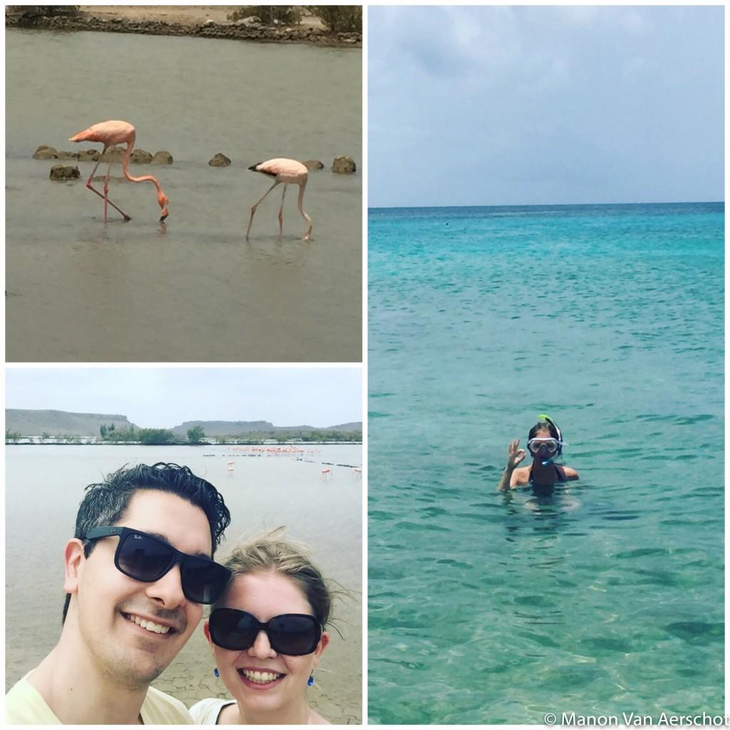 Curacao copy4